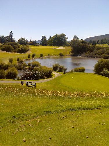 golf-nueva-zelanda.jpg