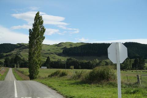 carretera-nueva-zelanda.jpg