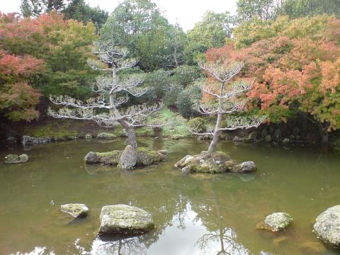 hamilton-jardin.jpg