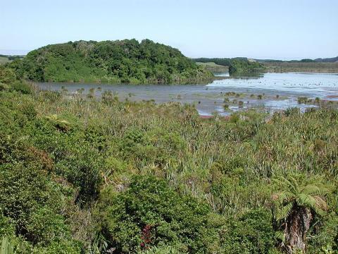 lago-nueva-zelanda.jpg